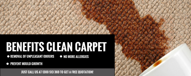 Carpet Stain Removal South Maclean