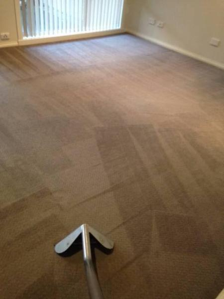Carpet Cleaning & Stain Removal Coochin