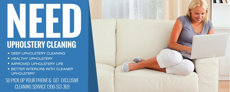Professional Upholstery Cleaning North Branch