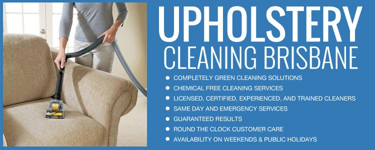 Upholstery Dry Cleaning North Branch