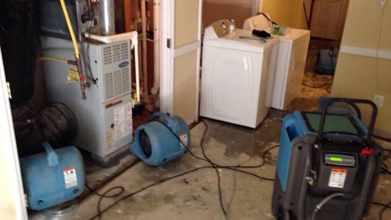 Water Damage Flood Restoration East Cooyar