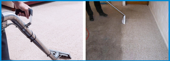 Carpet Sanitisation Service