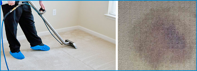 Carpet Stain Removal Eddington