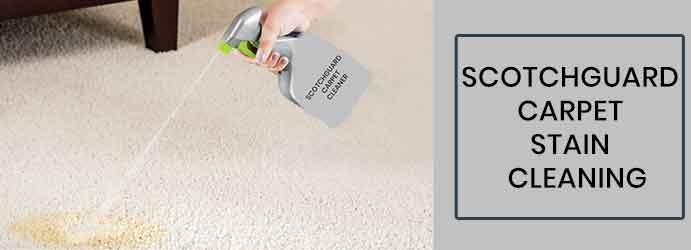 Scotchguard Carpet Stain Protection