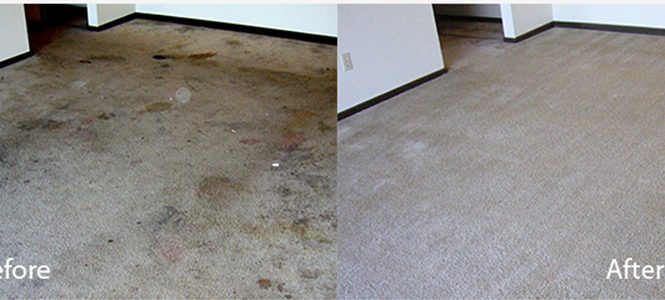How to keep Carpets Cleaners for Long