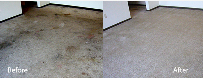 How To Keep Carpets Cleaners For a Long Time