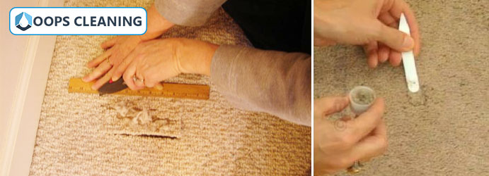 Carpet Restoration Services