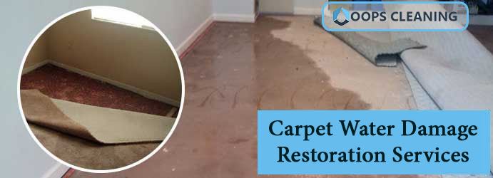 Carpet Water Damage Restoration Services Brisbane
