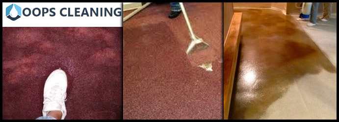 Carpet Water Damaged Restoration