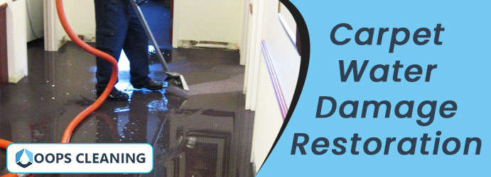 Carpet Water Damage Restoration Sunshine Coast