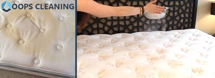 Mattress Urine Smell Removal White Patch