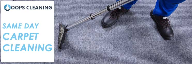 Same Day  Carpet Cleaning Upper Kedron