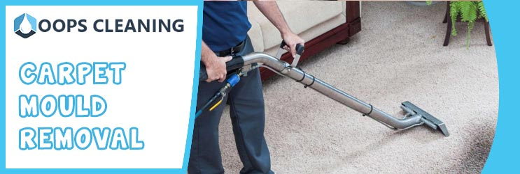 Carpet Mould Removal Adelaide
