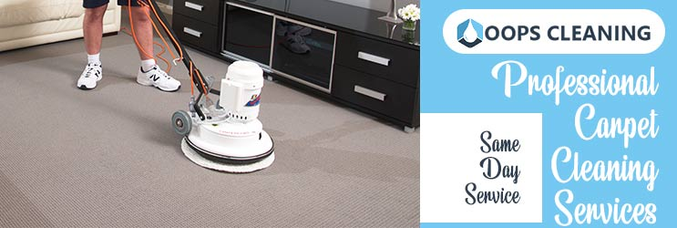 Professional Carpet Cleaning Perth