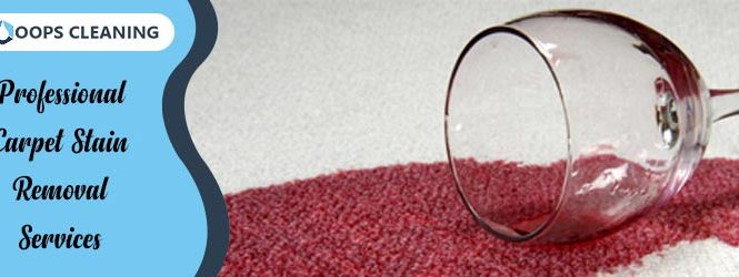 Professional Carpet Stain Removal Services