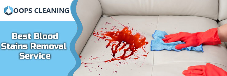Blood Stains Removal Service