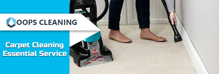Carpet Cleaning Essential Service
