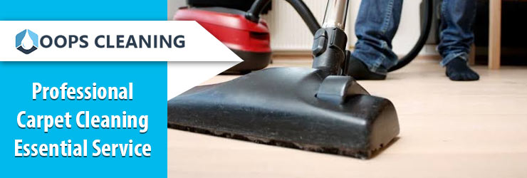 Carpet Cleaning Essential Services