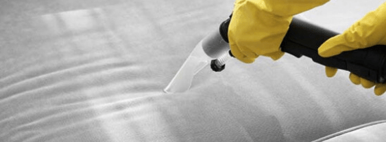 Couch Steam Cleaning Adelaide